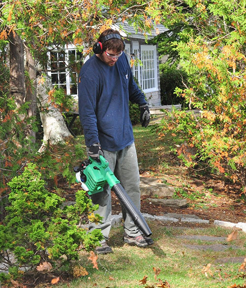 Hitachi RB24EAP Handheld Leaf Blower