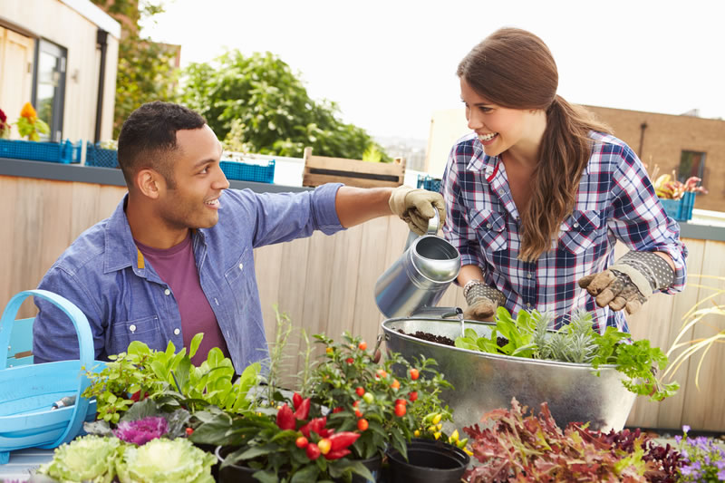 Best natural gardening tips for beginners to get you - Gardening tips for beginners ...