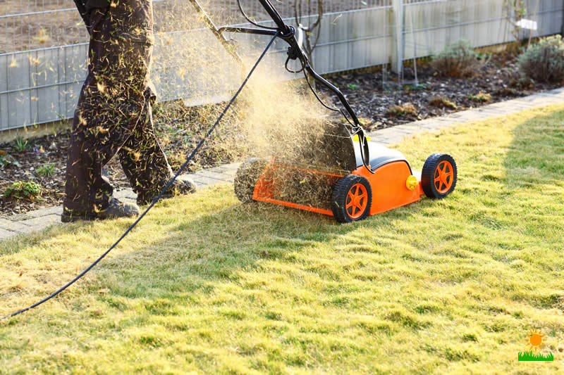 Scarifier removes dead moss and other debris grass cuttings
