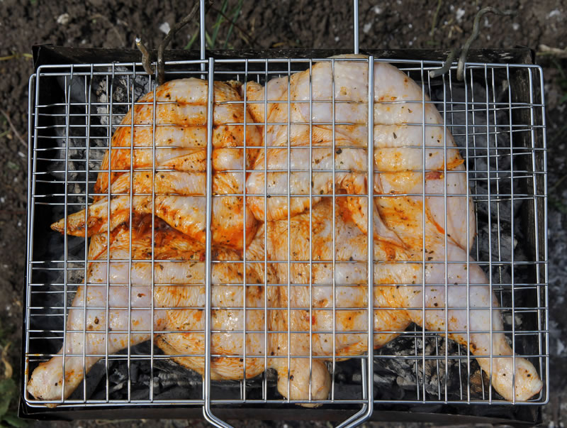 Grilled Chicken Best Recipes