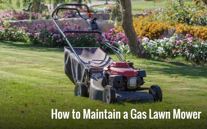 How to Maintain a Gas Lawn Mower all reasons
