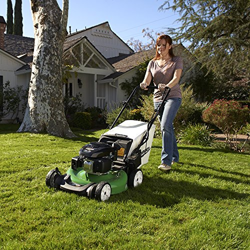 The Best Self-Propelled Lawn Mower Buying Guide (2019): Our
