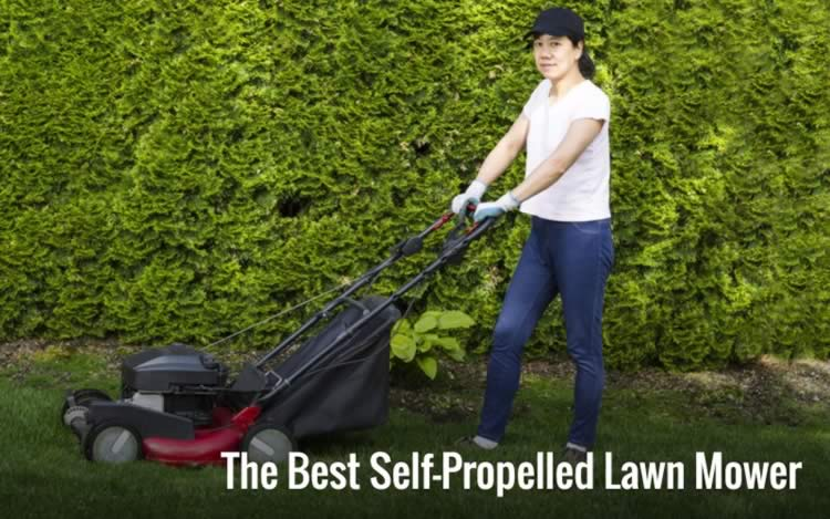 Best Self-Propelled Lawn Mower Buying Guide and Comparison