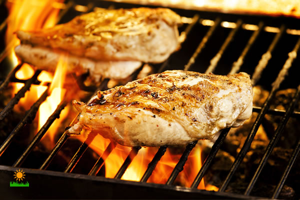 Best Grilled Chicken Recipes Features
