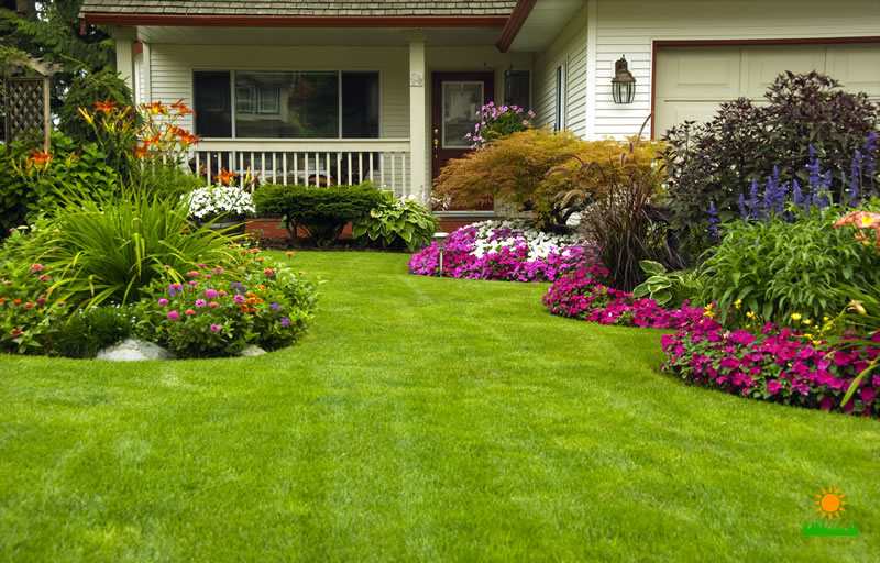 All Year Round Lawn Care