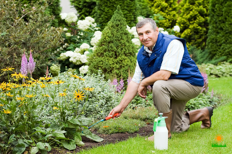 how gardeners protect