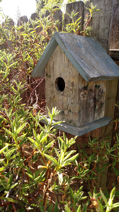 marks birdhouses