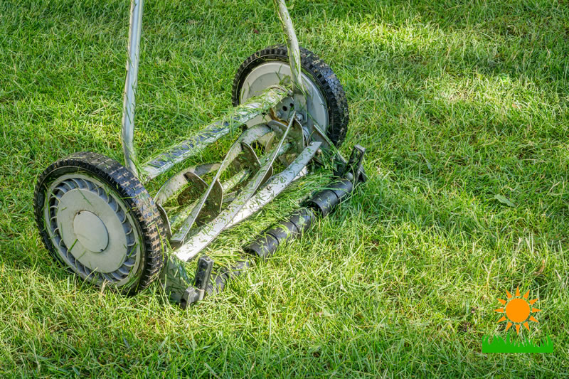 The Best Hand Push Lawn Mower 2020 Everything Old Is New Again Yard Day