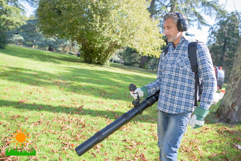 Leaf Blower How-To Maintain Guide and Safety Tips